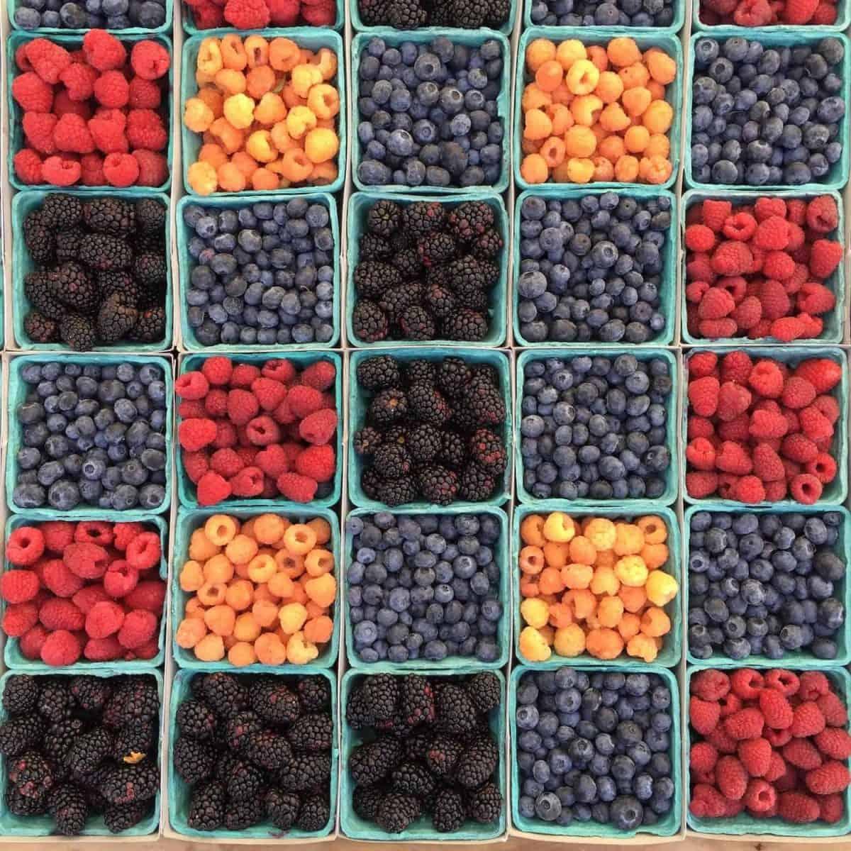 REKO Berries